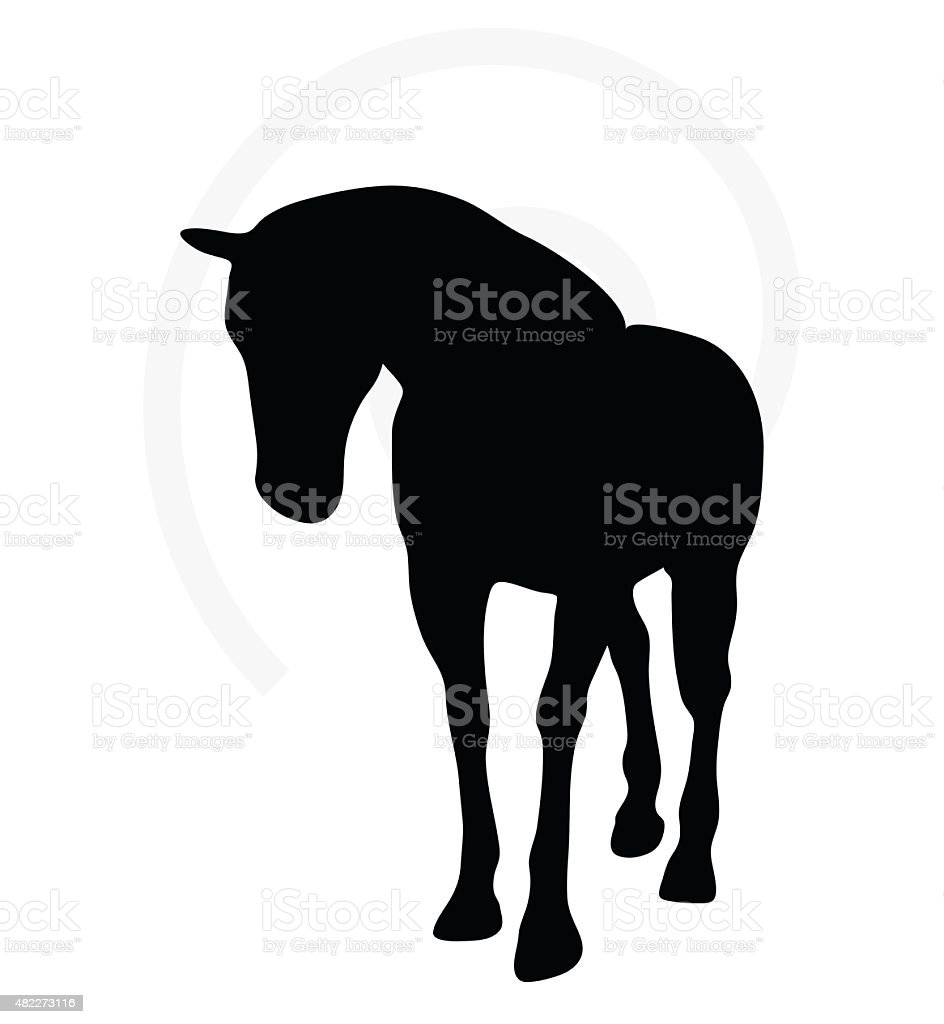 Horse Silhouette In Walking Head Down Stock Illustration Download Image Now Istock