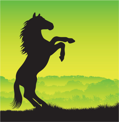 Horse Silhouette Rearing Up Stock Vector Art & More Images ...