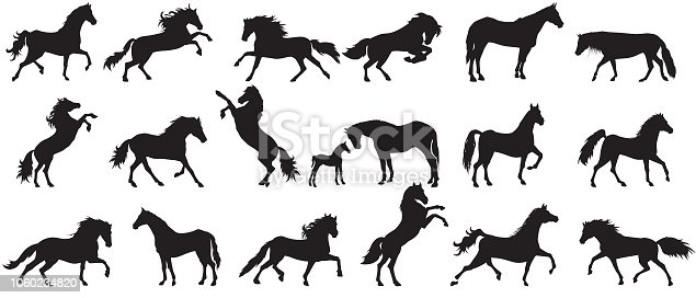 Horse silhouette set