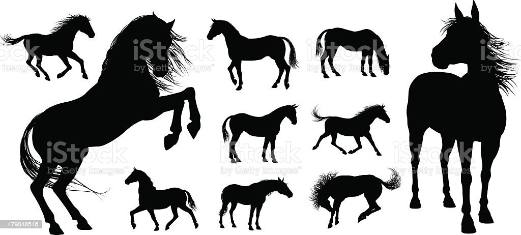 Horse Silhouettes vector art illustration