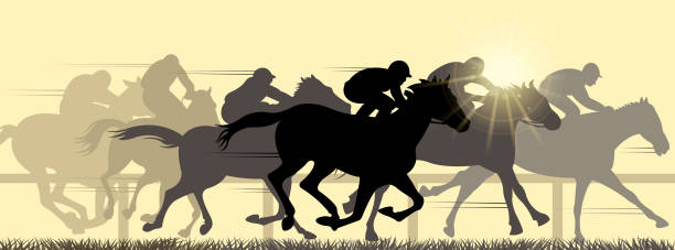 말 스포츠 - horse racing stock illustrations