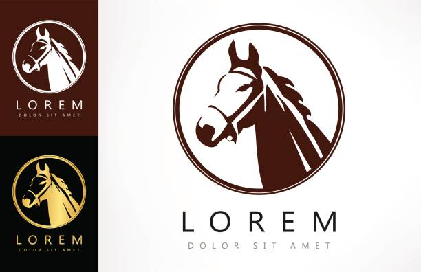 ilustraciones, imágenes clip art, dibujos animados e iconos de stock de símbolo de caballos - caballo