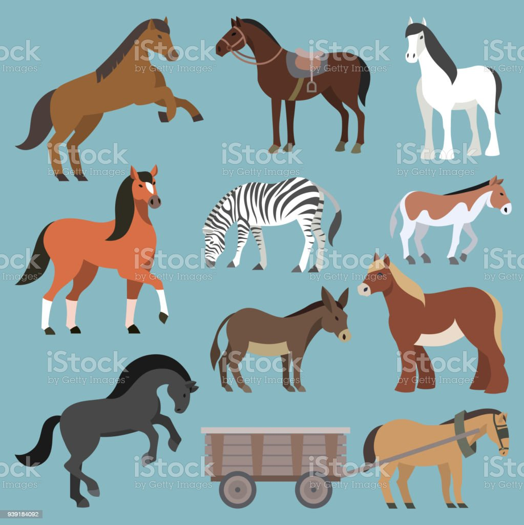 Horse vector animal of horse-breeding or equestrian and horsey or equine stallion illustration animalistic horsy set of pony zebra and donkey character isolated on background vector art illustration
