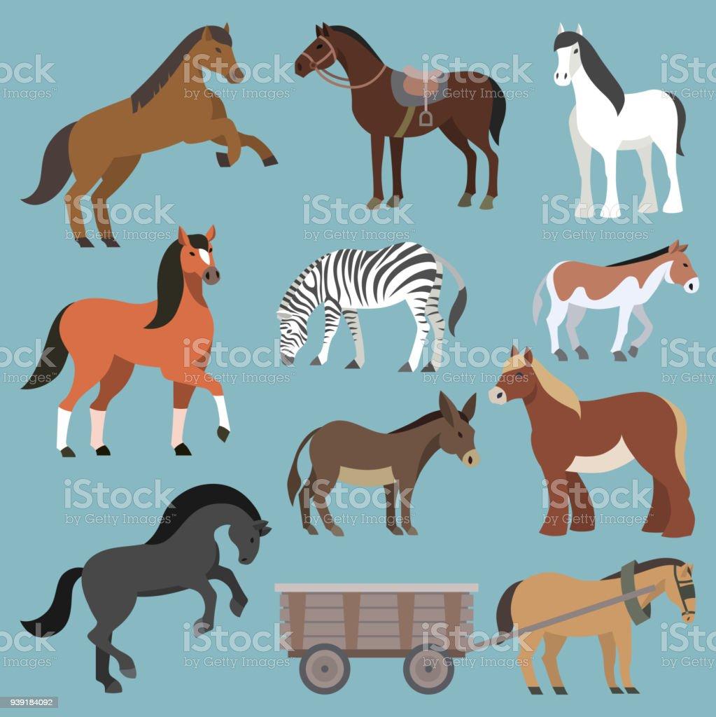 Animal de vector de caballo de conjunto horsy animalística de los ilustración padrillo de la cría de caballos o ecuestre caballos o equinos de potro de cebra y burro carácter aislado sobre fondo - ilustración de arte vectorial