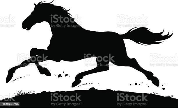 Horse vector id165666754?b=1&k=6&m=165666754&s=612x612&h=wvofbnhpxuakayumkjsqs1reryxqi0eq5sow06d44bu=