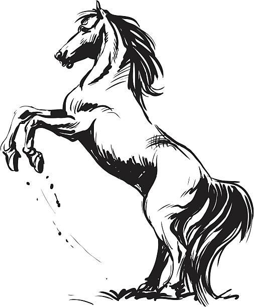 馬 ベクターアートイラスト