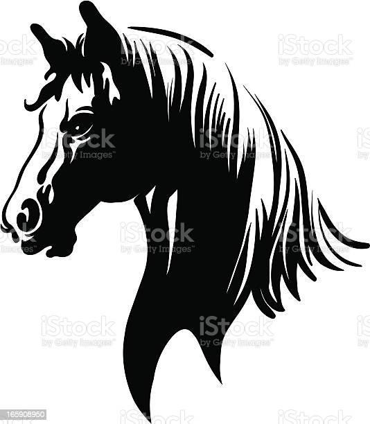 Horse vector id165908950?b=1&k=6&m=165908950&s=612x612&h=9wgcbzjv7troceag6rcgcv3bct2yocdame0lqsvg578=