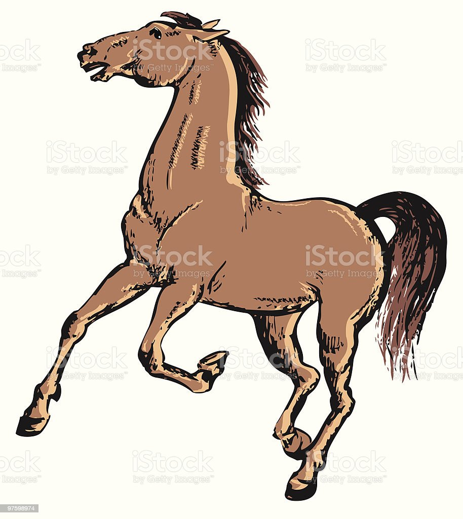 horse royalty-free horse stock vector art & more images of animal