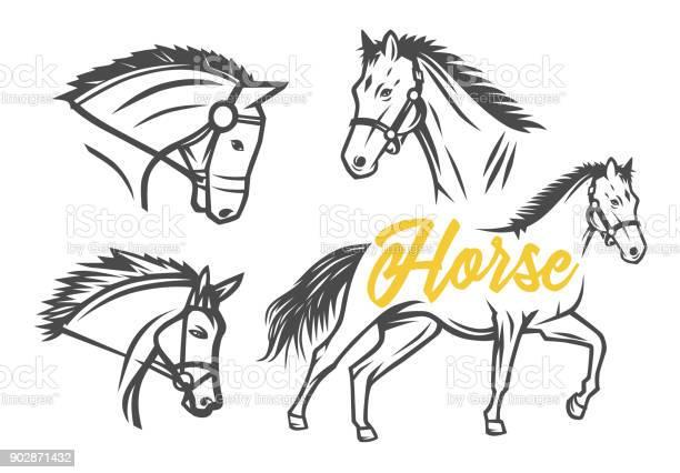 Horse vector illustration vector id902871432?b=1&k=6&m=902871432&s=612x612&h=5yjxniz6x1ya4zg89xe0pgkb9hczdxdiy22jxzycofk=