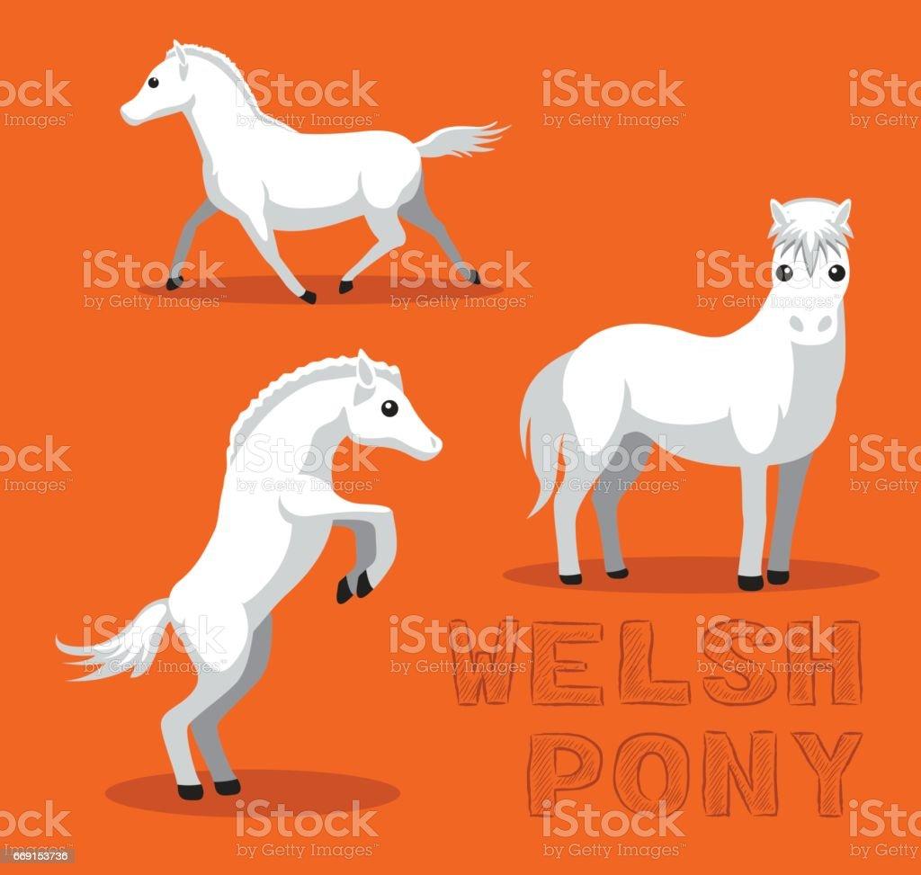 Horse Welsh Pony Cartoon Vector Illustration vector art illustration