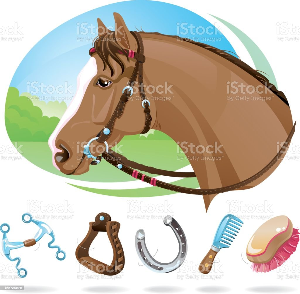 Horse With Western Riding Equipment Stock Illustration Download Image Now Istock