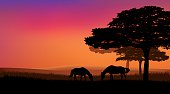 pair of horses grazing at sunset under trees - rural evening vector landscape