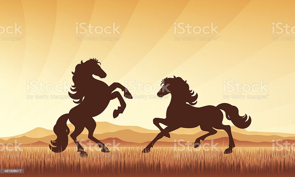 Horses in field on sunset background vector silhouette illustration. vector art illustration