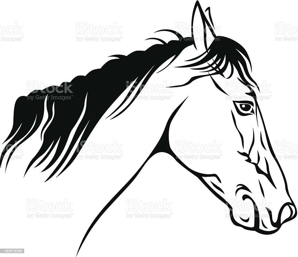 Horses Muzzle Profile Stock Vector Art & More Images of Animal ...