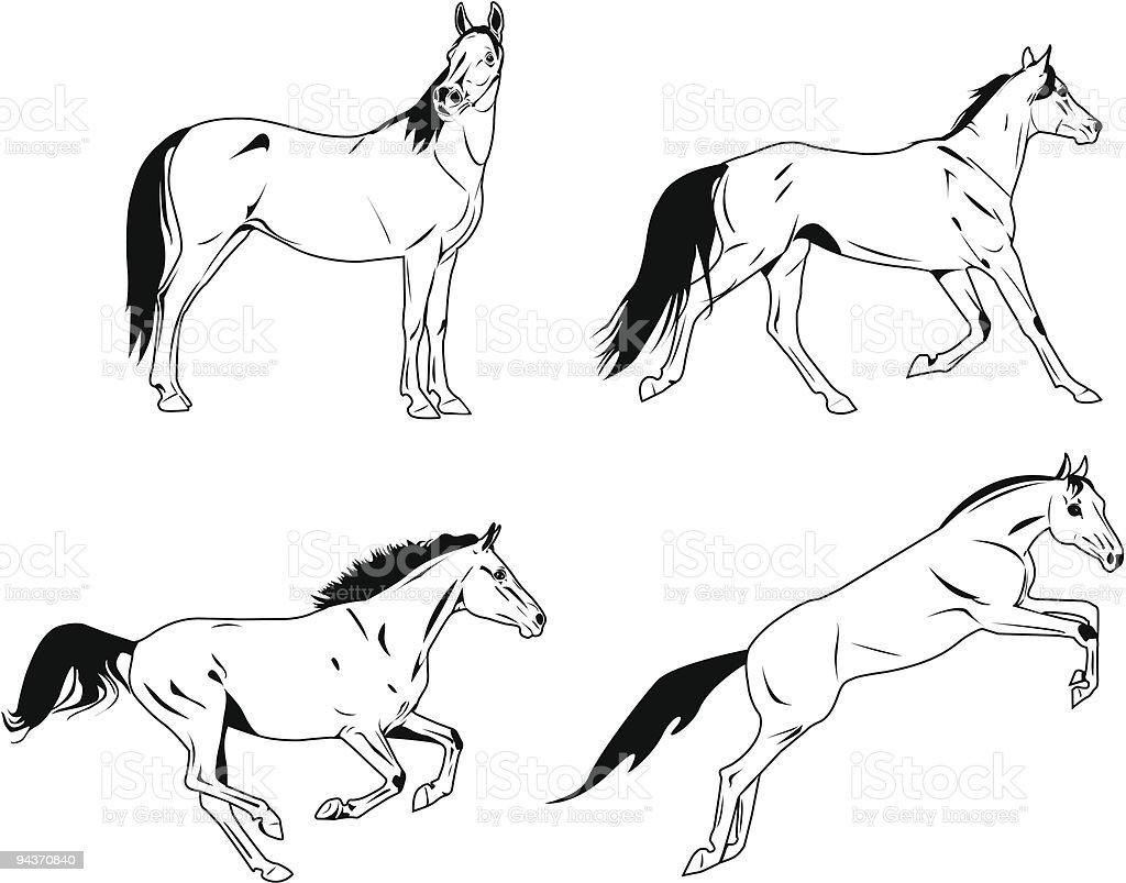 horses sketches vector art illustration