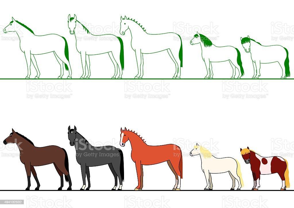 horses standing in line vector art illustration