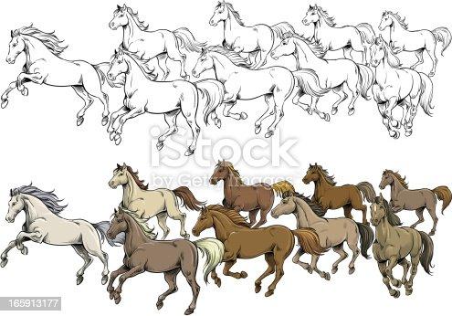istock Horses 165913177