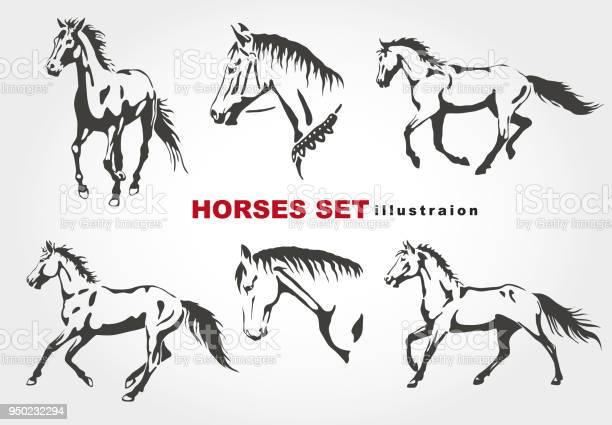Horses vector id950232294?b=1&k=6&m=950232294&s=612x612&h=caz0ljt2k93hfryxbnck qzt5m1d7rjkxbcvvz53ckg=