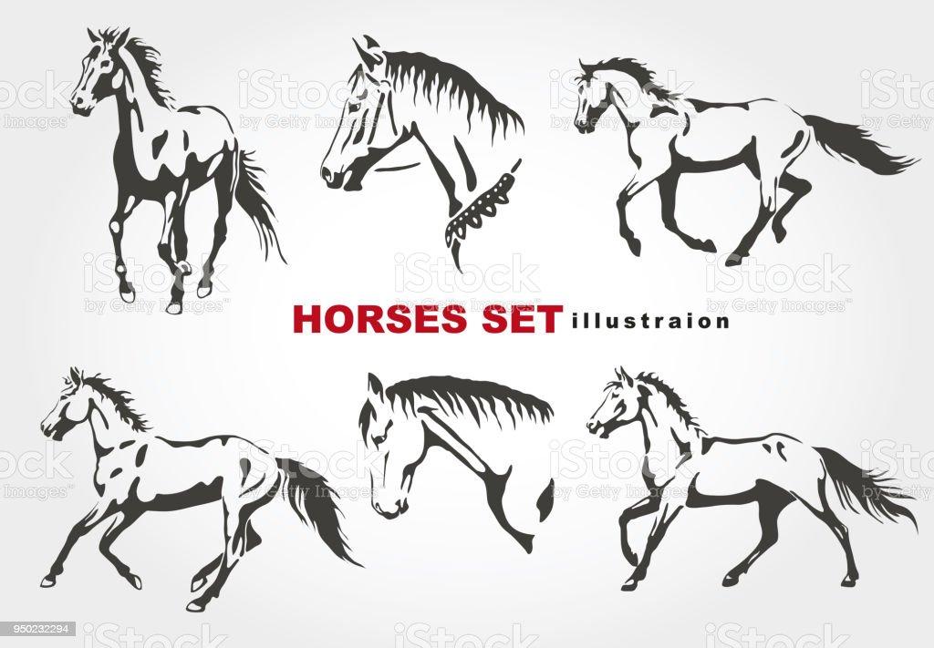 Los caballos. - ilustración de arte vectorial