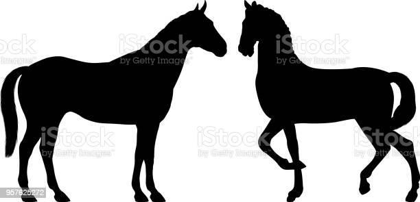 Horses vector id957625272?b=1&k=6&m=957625272&s=612x612&h=rw8qbn cp oebnujl2wmnkgzemhlbsmsbxqh6udvhei=