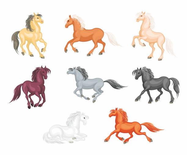 horses vector set vector art illustration