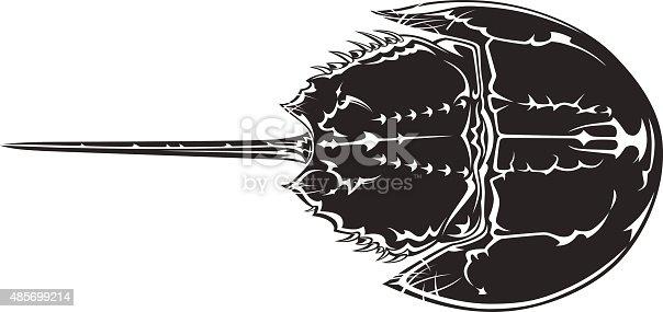 Horseshoe crab vector image.