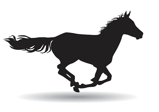 horse,silhouette on a white background vector art illustration