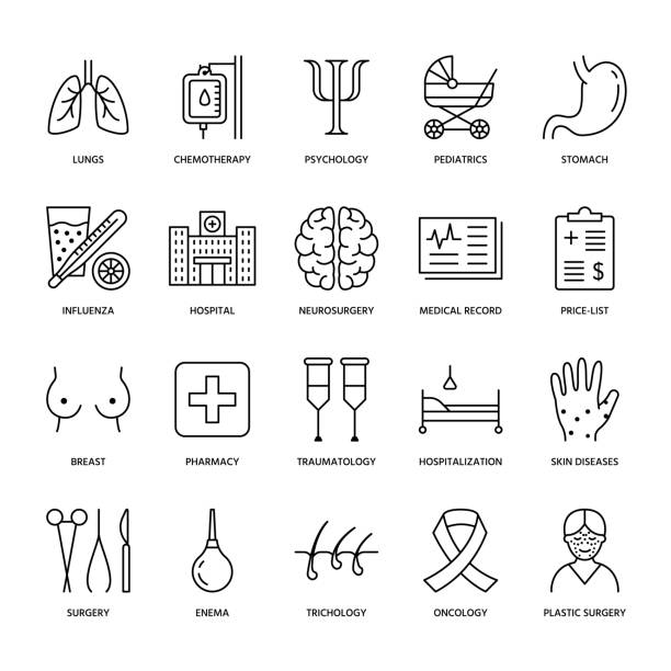 Hospital, medical flat line icons. Human organs, stomach, brain, flu, oncology, plastic surgery, psychology, breast cancer. Health care clinic thin linear signs Hospital, medical flat line icons. Human organs, stomach, brain, flu, oncology, plastic surgery, psychology breast cancer Health care clinic thin linear signs breast stock illustrations