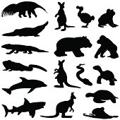 Vector silhouettes of animals from hot climates many of which can be found in Australia.