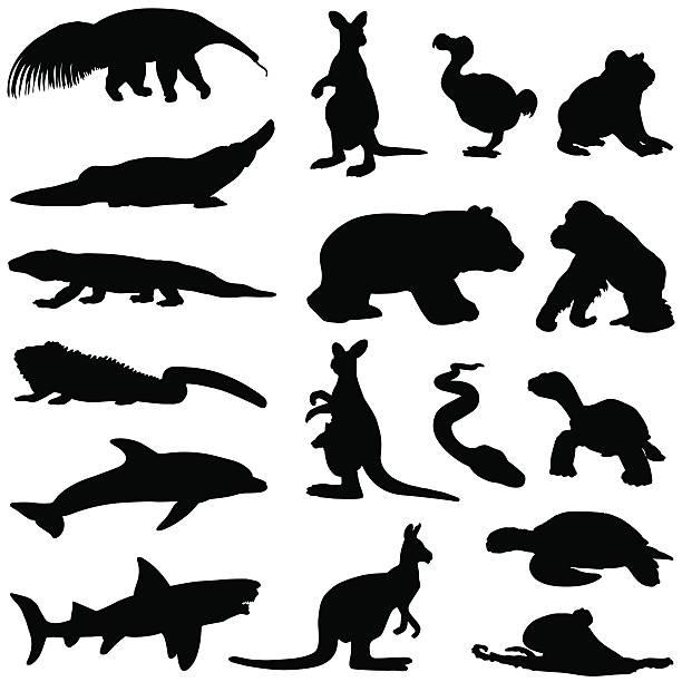heißes klima tierischen silhouetten - ameisenbär stock-grafiken, -clipart, -cartoons und -symbole