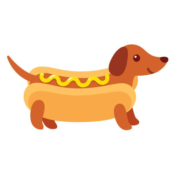 bildbanksillustrationer, clip art samt tecknat material och ikoner med hot dog tax valp - tax