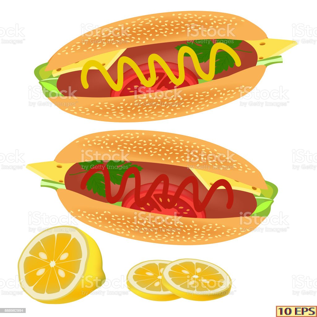 Hot dog. Delicious hot dog with mustard, ketchup. Tasty hot dog with sausage, cheese, tomato, lettuce, parsley. Fast food. Vector. vector art illustration