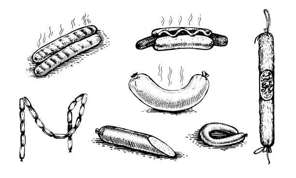 bildbanksillustrationer, clip art samt tecknat material och ikoner med varm korv, korvar, salami. naturliga produkter och hälsosam livsstil, läckra produkter, en uppsättning mallar för meny design, restauranger och catering. - korv