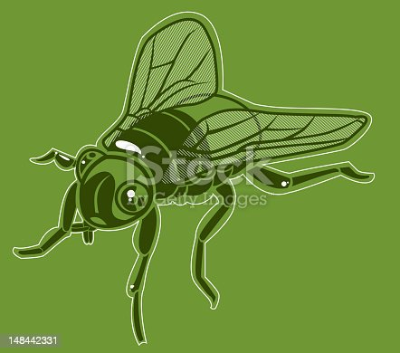 Illustration of a fly. High resolution jpg file uncluded. Detailed outlined insect series. Also see: