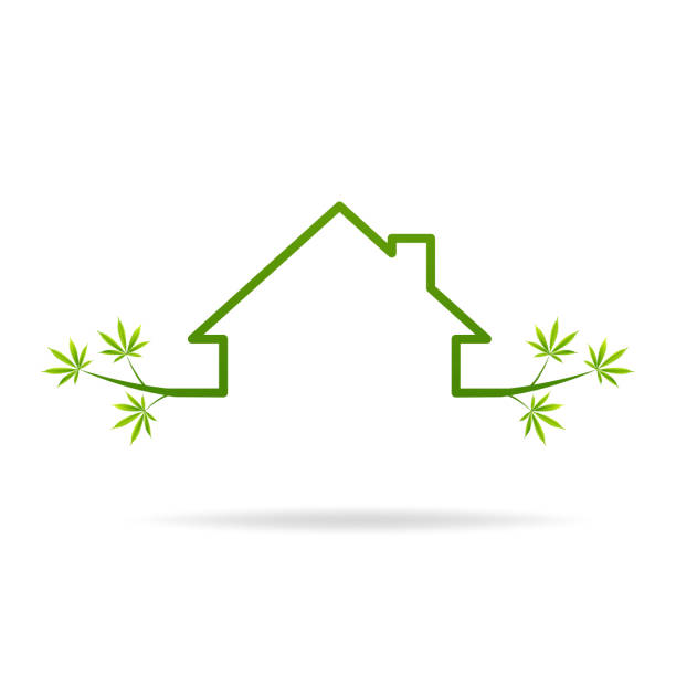 house, home, marijuana outline icon. Can be used for web, logo, vector art illustration