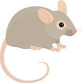 House Mouse - Illustration Isolated on White Background