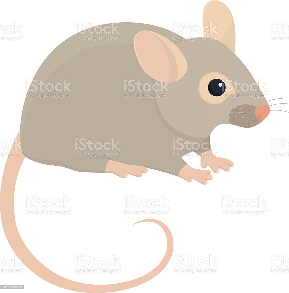House mouse illustration on white background vector art illustration