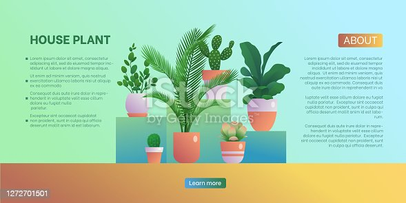 istock House plant landing page template 1272701501
