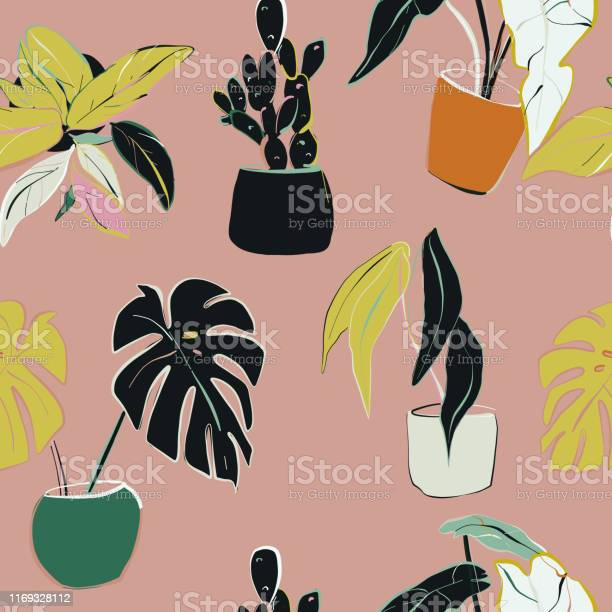 House Plants Decoration Home Floral Pattern Illustration Hand Drawn Modern Natural Decoration Houseplants Botanical Drawing Stock Illustration Download Image Now Istock