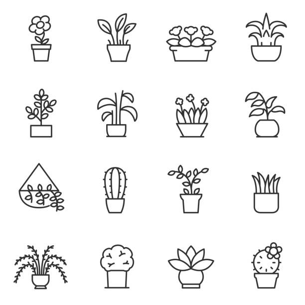 House plants icon set. Flower in pot. Line with editable stroke House plants icon set. Flower in pot linear design. Line with editable stroke flower part stock illustrations