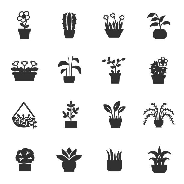 House plants, icons set. Flower in pot House plants, monochrome icons set. Flower in pot, simple symbols collection potted plant stock illustrations