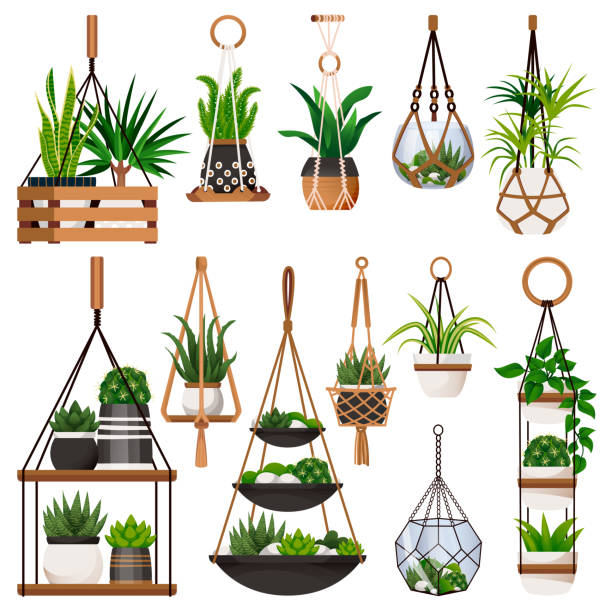 Hanging Planter Illustrations, Royalty-Free Vector ...