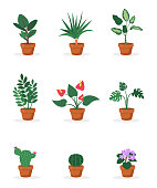 House plants in pots flat vector illustrations set