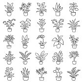 Set of simple images of house plants in pots. Doodle icon set. Hand drawn vector illustration.