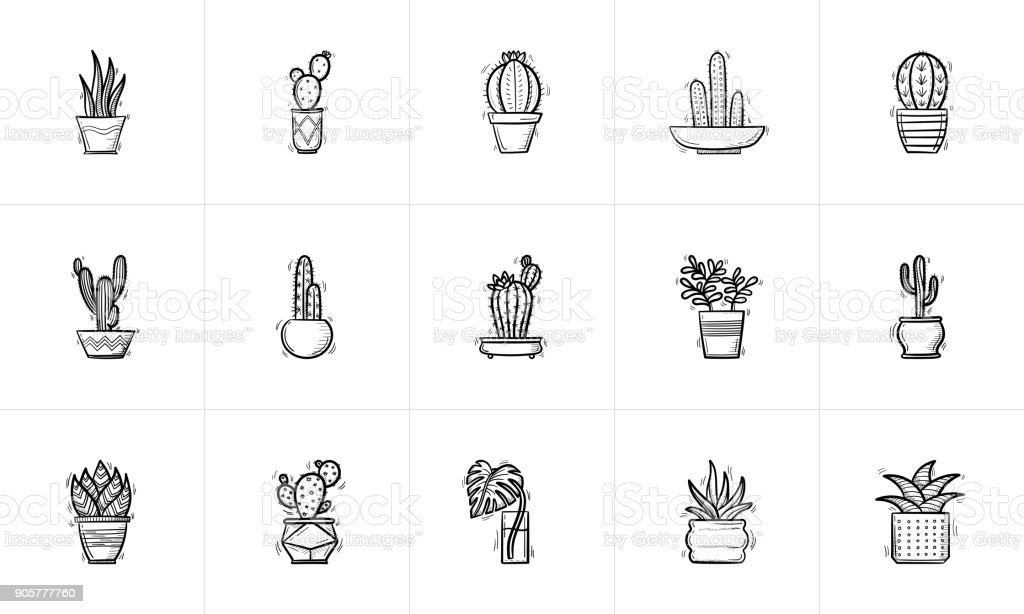 House potted plants and flowers sketch icon set vector art illustration