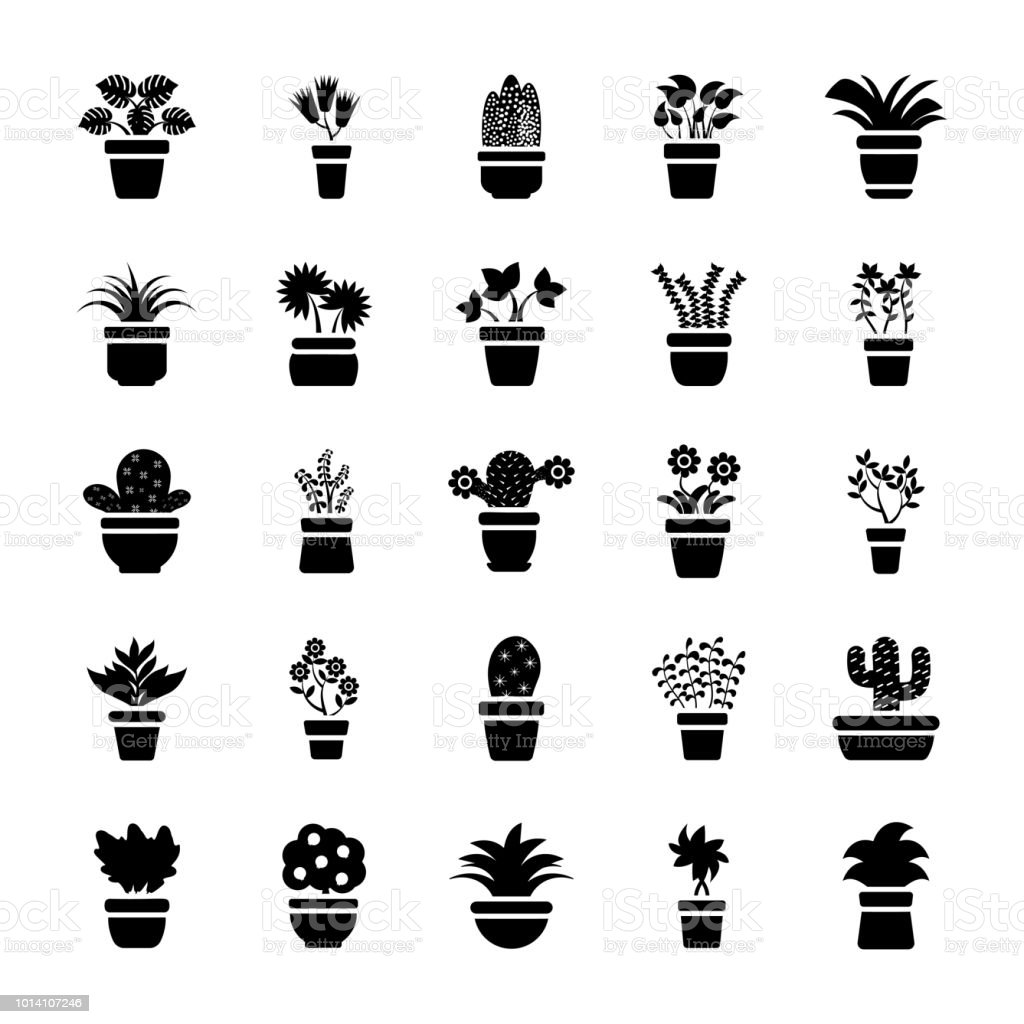 Houseplants Glyph Vector Icons vector art illustration