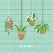 Vector illustration of hanging flower planters with various houseplants, indoor garden on brick wall background.