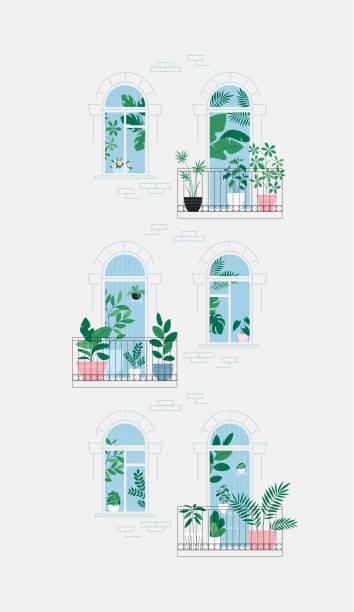 ilustrações de stock, clip art, desenhos animados e ícones de houseplants on the balcony. room full of plants, view through the door. urban jungle concept. apartment house facade - ivy building