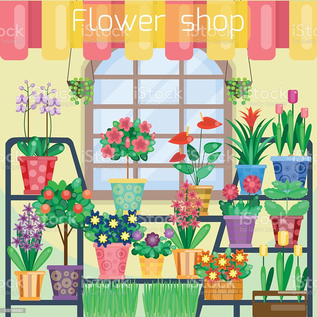 Houseplants On The Showcase In Flower Shop Stock Vector Art More
