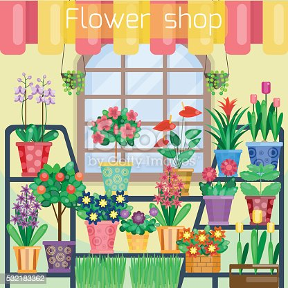 Zimmerpflanzen auf die schaufenster in blumen shop stock for Shop zimmerpflanzen